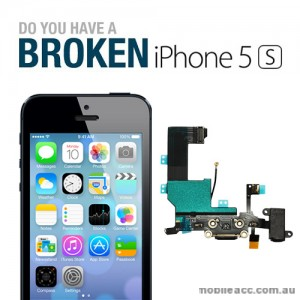 Mail-in Repair Service for iPhone 5S